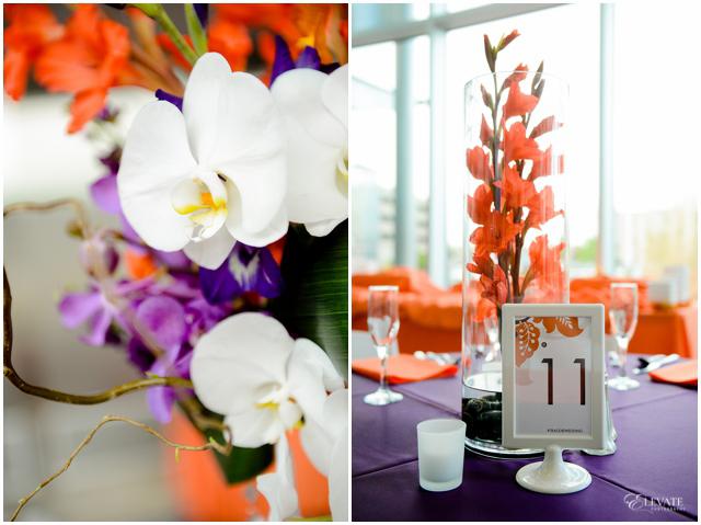 soccer-orange-purple-denver-wedding_0050