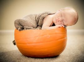 pumkin newborn