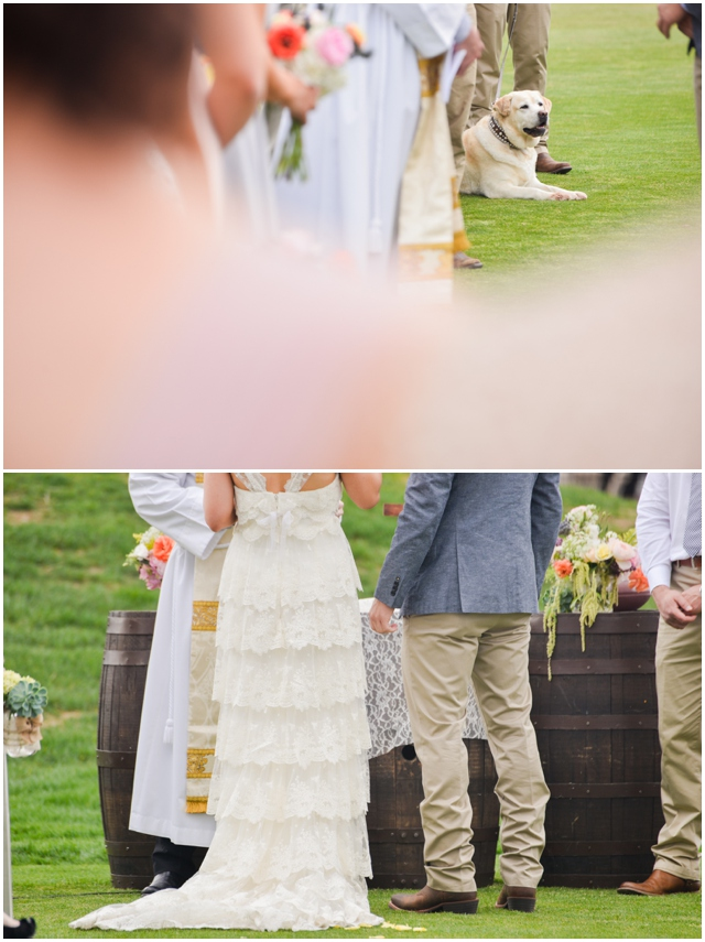 Highland_Meadows_Wedding026