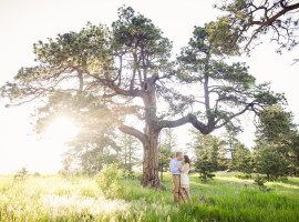 genesee park golden colorado engagement photos