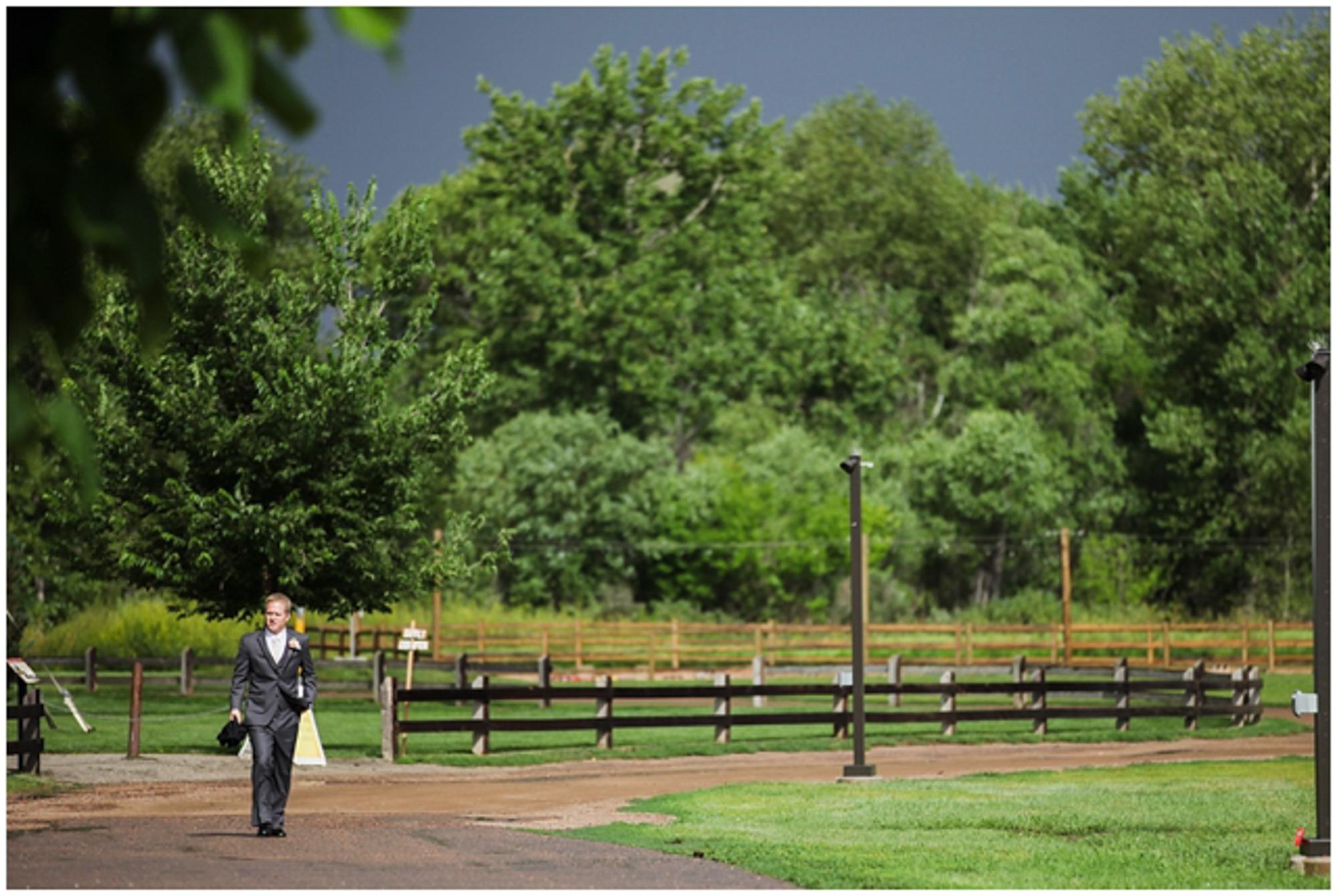 Whitney Drew Denver Botanic Gardens At Chatfield Wedding Photos Denver Wedding