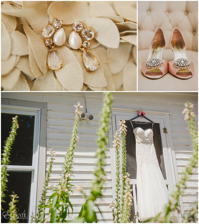 Denver Botanic Gardens at Chatfield Wedding Photos_0002