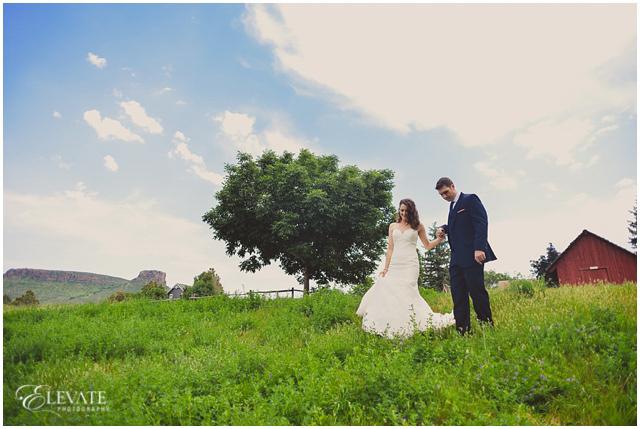 pines_at_genesee_wedding_photos020