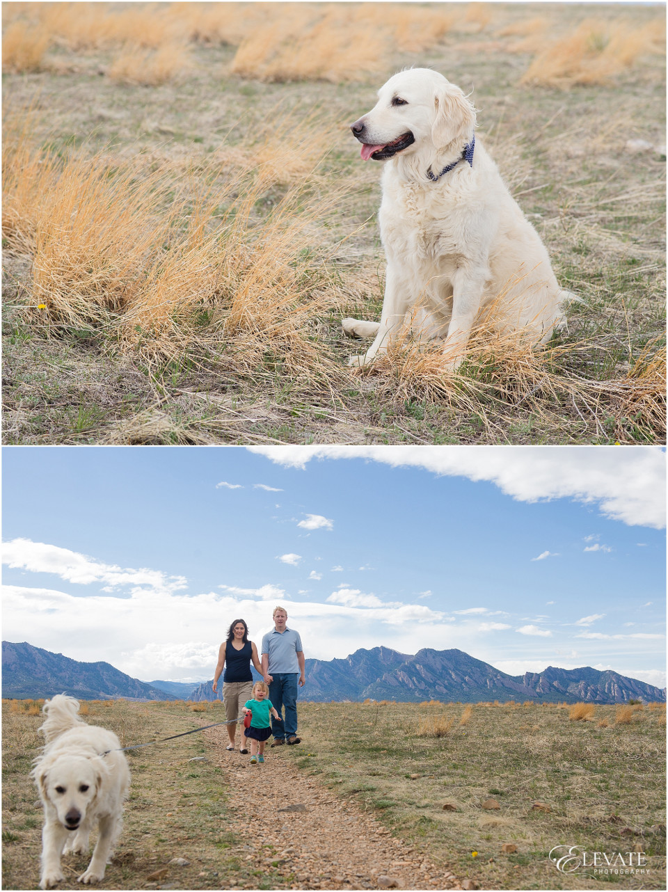 Boulder Family Photos_0005