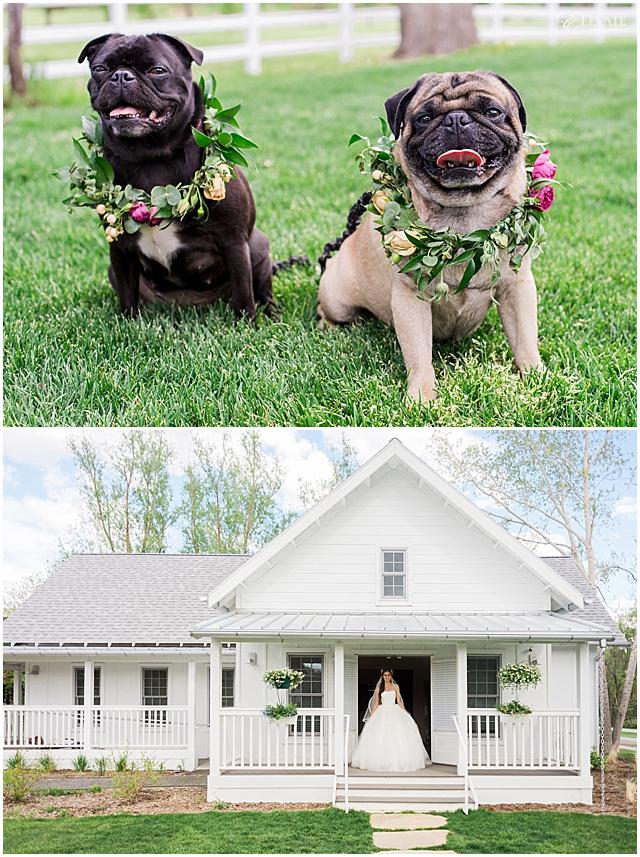 the-barn-at-raccoon-creek-styled-wedding-photos_0014