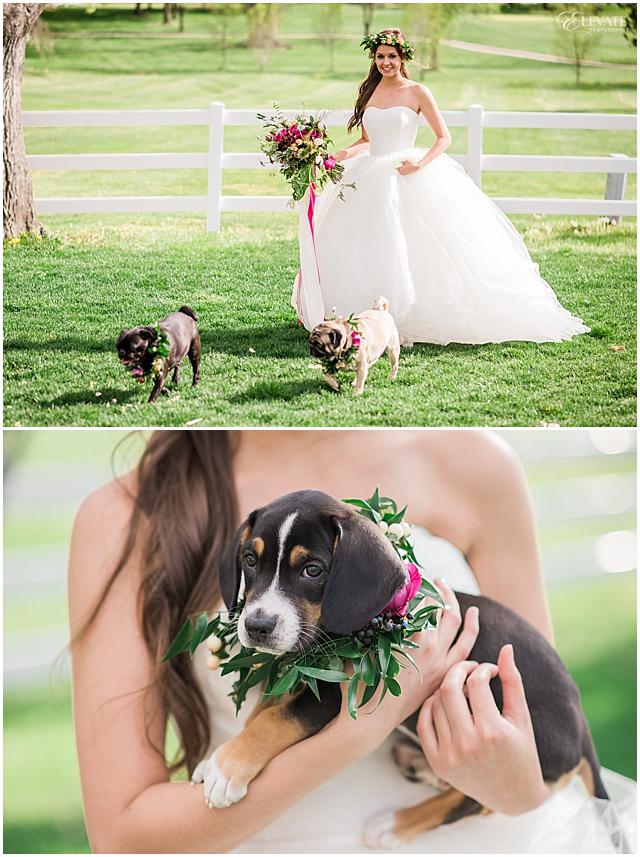 the-barn-at-raccoon-creek-styled-wedding-photos_0018