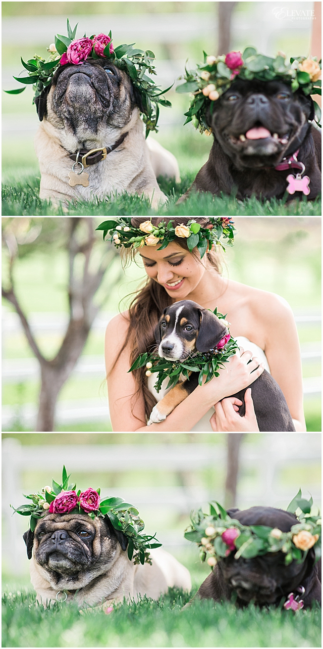 the-barn-at-raccoon-creek-styled-wedding-photos_0024
