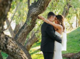 Crooked Willow Farms Wedding Photos