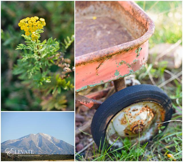 glenwood-springs-engagement-photos_0023
