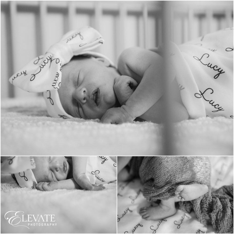Stapleton Newborn Photos