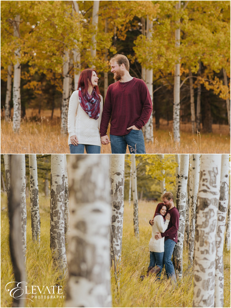 Evergreen Fall Engagement Photos