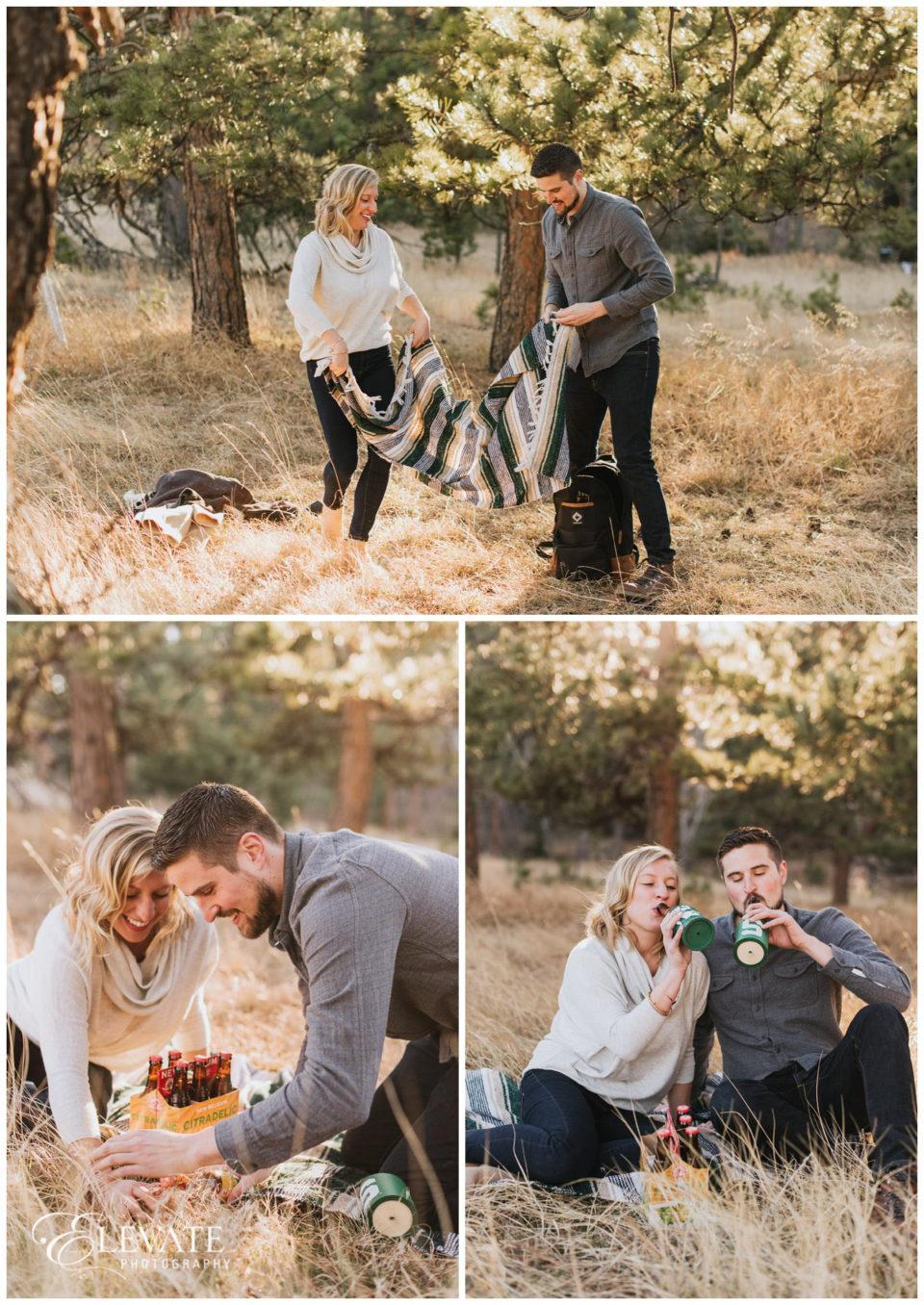 mountain picnic engagement