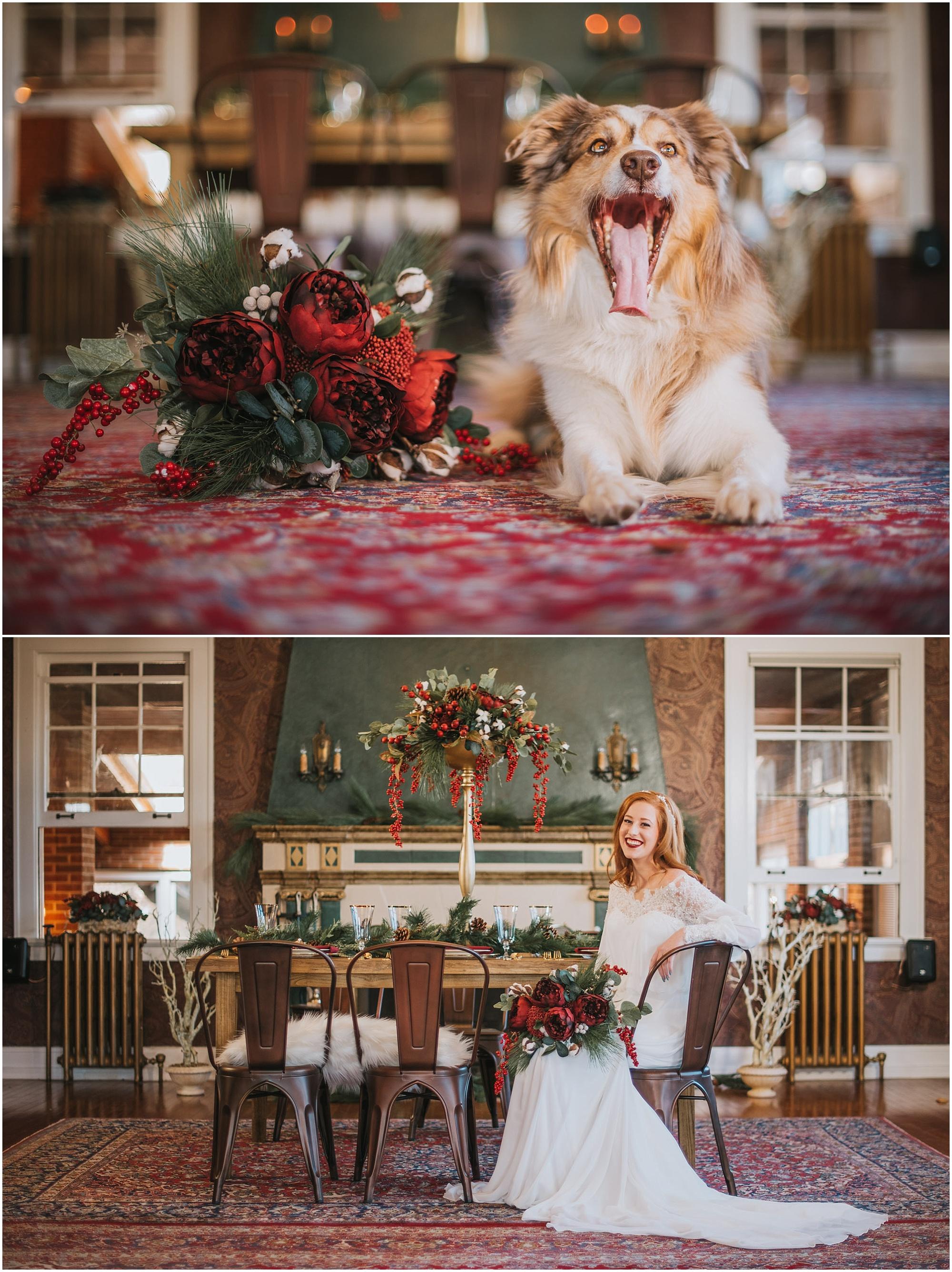 Boho Winter Wedding Lionsgate Event Center Style Shoot Denver Wedding Photographers