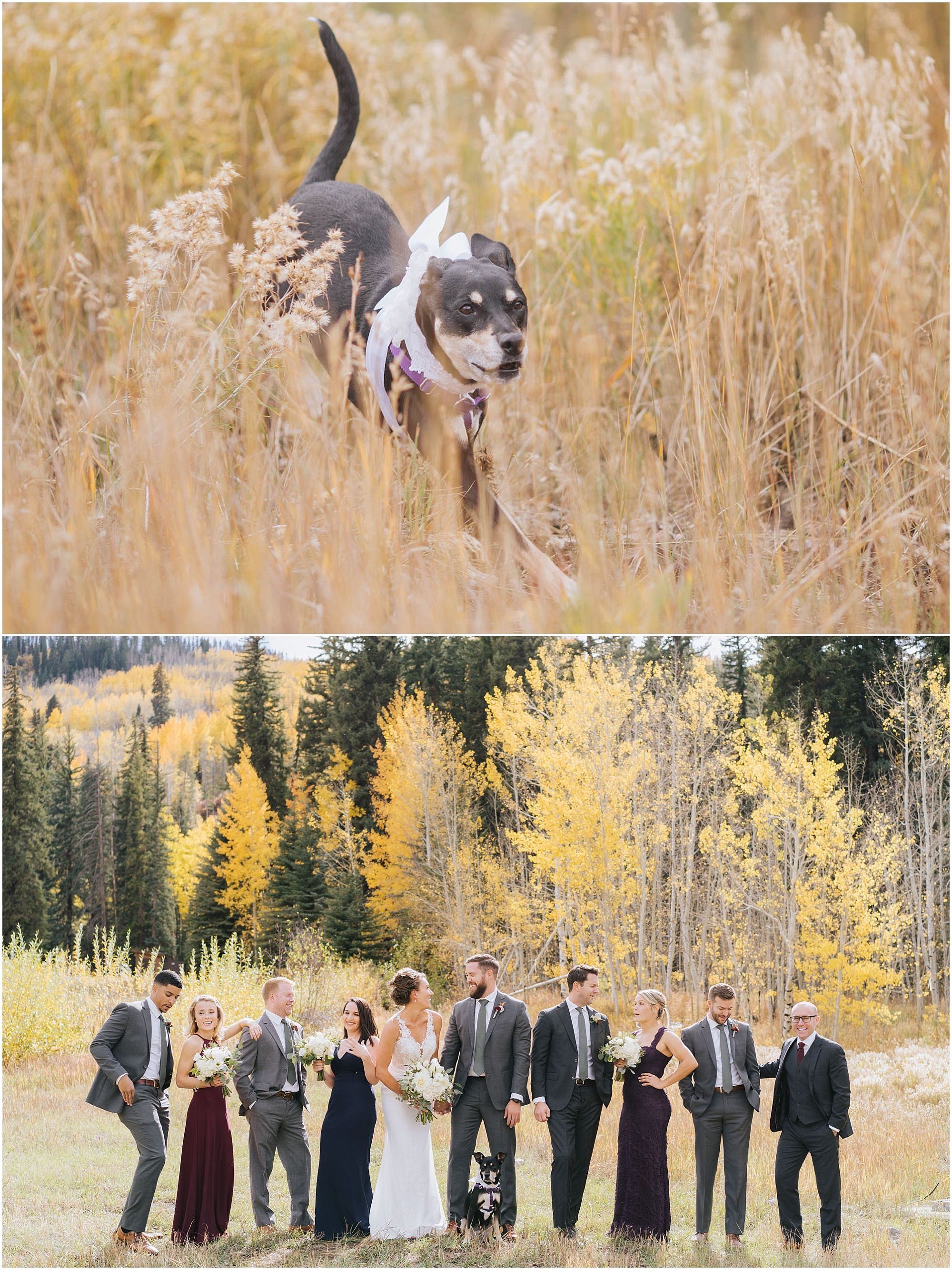 blair nate larkspur vail wedding photos denver